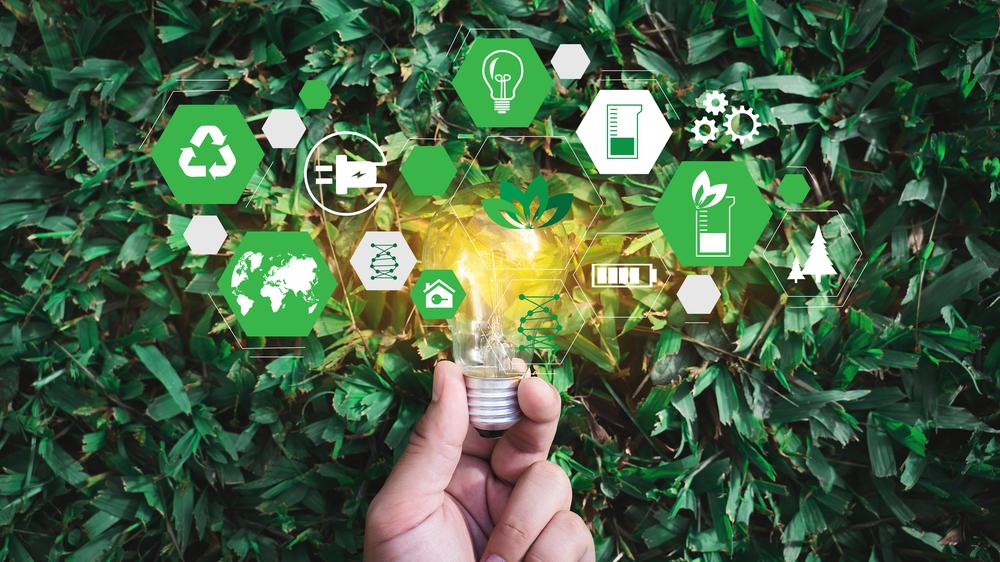 5 tiltak for økt bærekraft i din bedrift